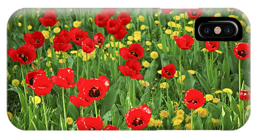 Tulip IPhone X Case featuring the photograph Meadow With Tulips by Elena Elisseeva
