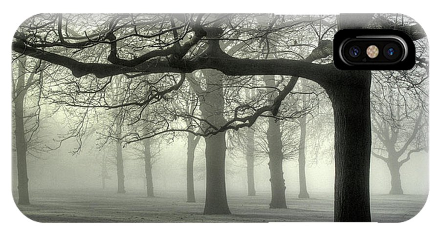 Trees IPhone X Case featuring the photograph Misty Morning by Andy Linden
