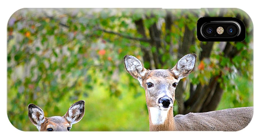 Landscape IPhone X Case featuring the photograph Mom And Baby Deer by Peggy Franz