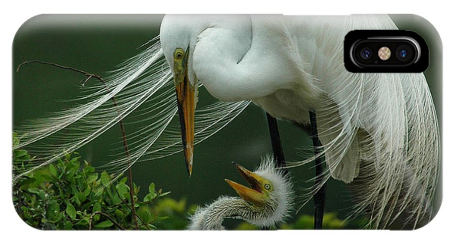 Great White Egret IPhone X Case featuring the photograph Mom And Me by Vivian Christopher