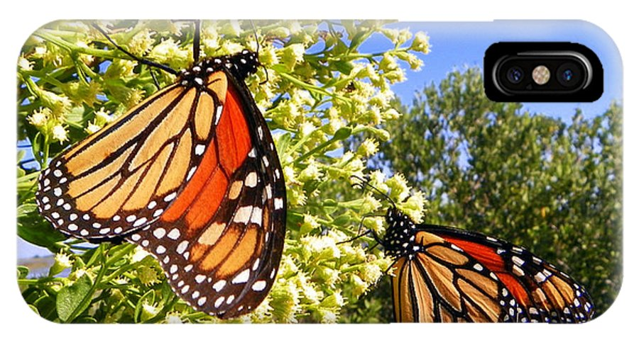 Butterfly IPhone X / XS Case featuring the photograph Monarch Rest I by Sheri McLeroy