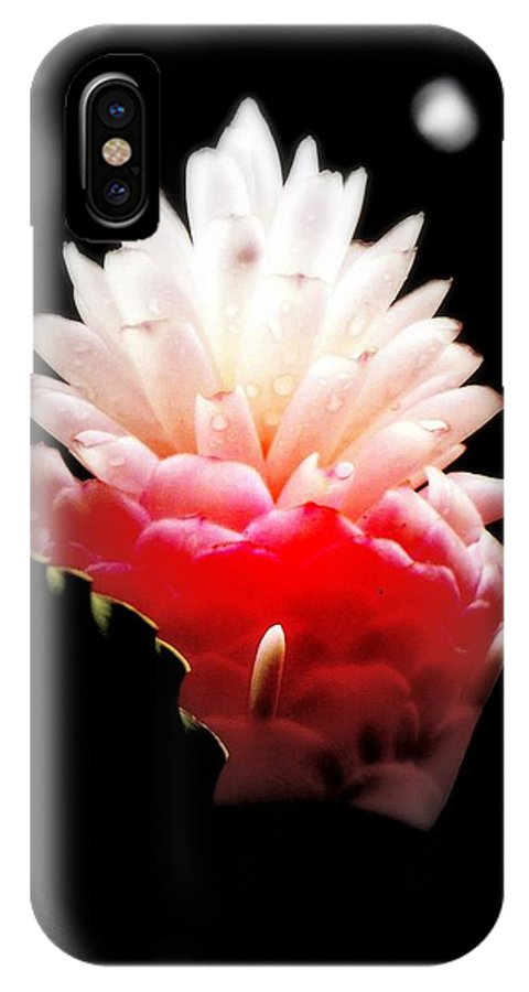 Flowers IPhone X Case featuring the photograph Moonlight Glow by Karen Wiles
