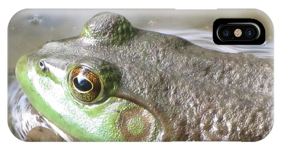 Frog IPhone X Case featuring the photograph Mountain Pond Wildlife by Susan Carella