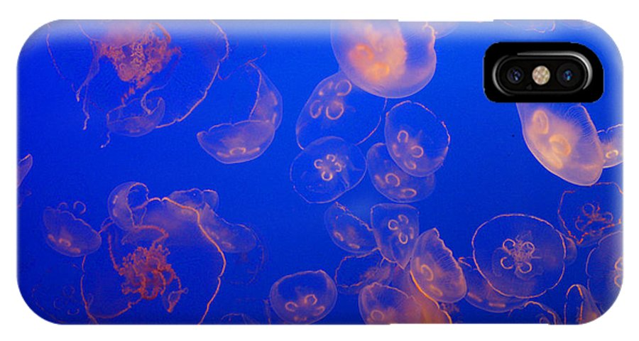 Jelly Fish IPhone X / XS Case featuring the photograph Multiple Jelly Fish by Randy Harris