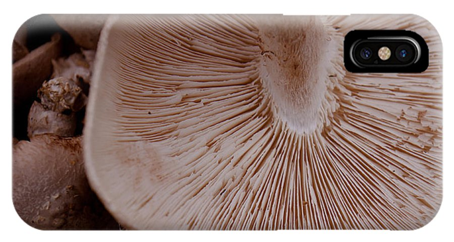 Mushroom IPhone X Case featuring the photograph Mushroom Gills by Lauri Novak