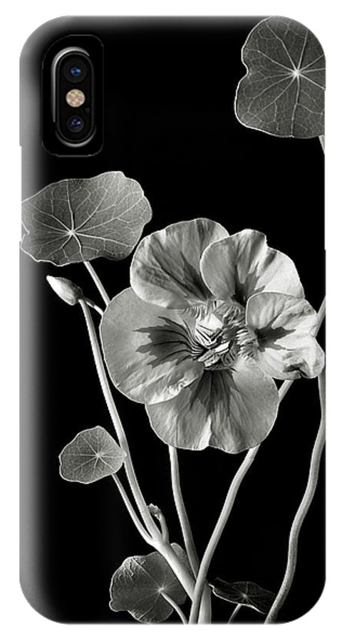 Flower IPhone X Case featuring the photograph Nasturtium In Black And White by Endre Balogh