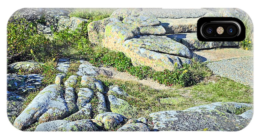 Acadia National Park IPhone X / XS Case featuring the photograph Natural Color by Lynda Lehmann