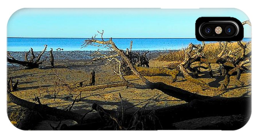 Driftwood IPhone X Case featuring the photograph Natures Art Gallery Tn by Sheri McLeroy