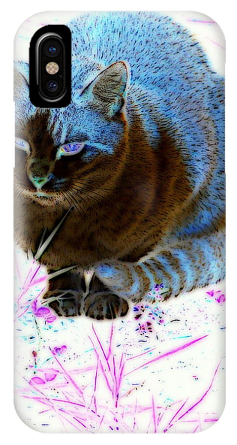 Cat IPhone X / XS Case featuring the digital art New Kitty Blue by Kathy Sampson