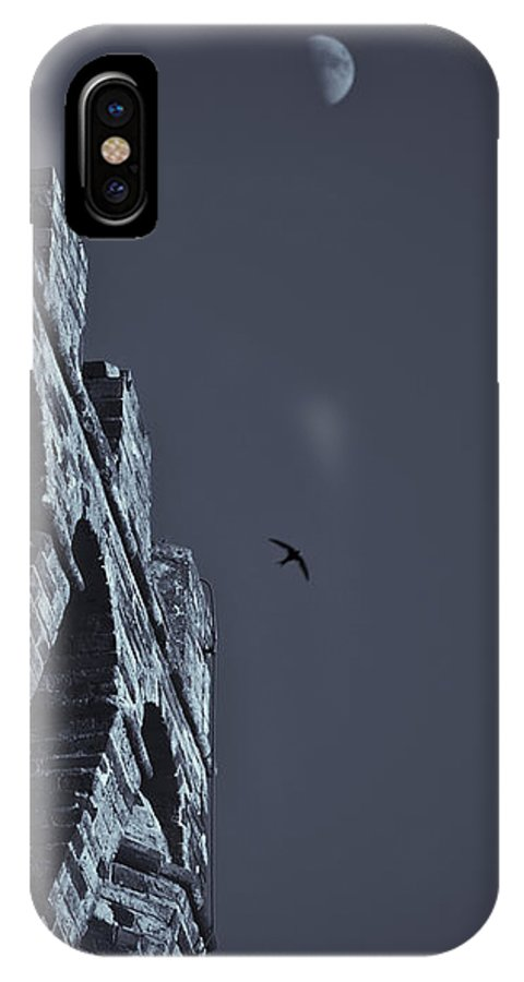 Swallow IPhone X Case featuring the photograph Night Flight by Michele Mule'