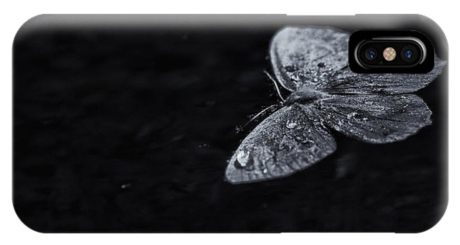 Moth IPhone X Case featuring the photograph Night Moves by Susan Capuano