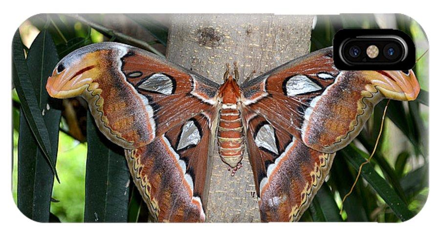 Nature IPhone X Case featuring the digital art Not A Butterfly But An Atlas Moth by Eva Kaufman