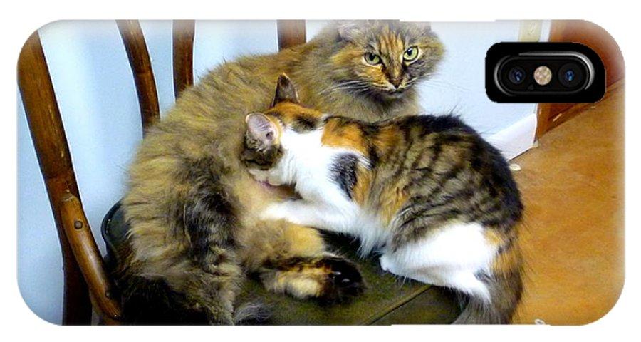 Cat IPhone X Case featuring the photograph Nursing Aunt Mattie by Renee Trenholm