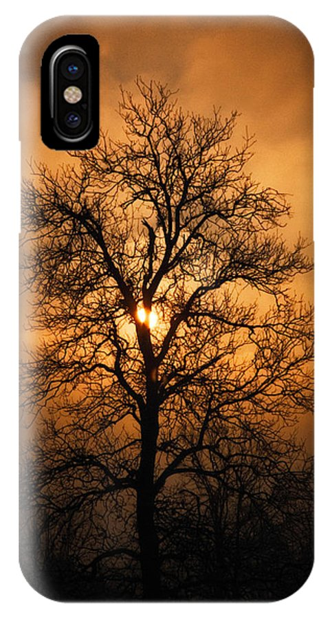 Art IPhone X Case featuring the photograph Oak Tree Sunburst by Michael Dougherty