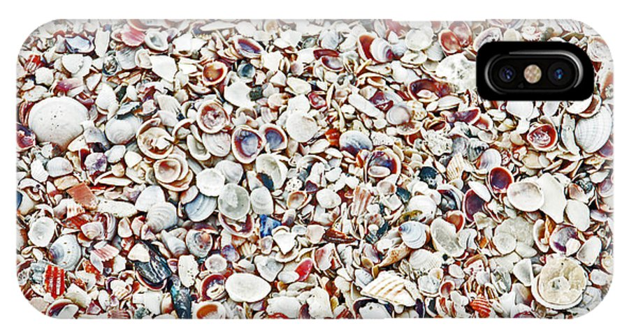 Seashell IPhone X Case featuring the photograph Ocean Shells by Aimee L Maher ALM GALLERY