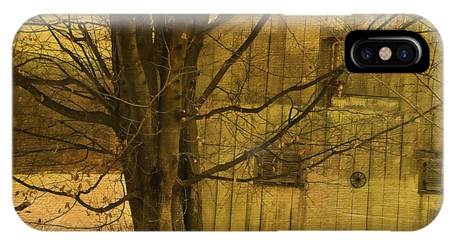Tree IPhone X / XS Case featuring the photograph Old And Crooked by Deborah Benoit
