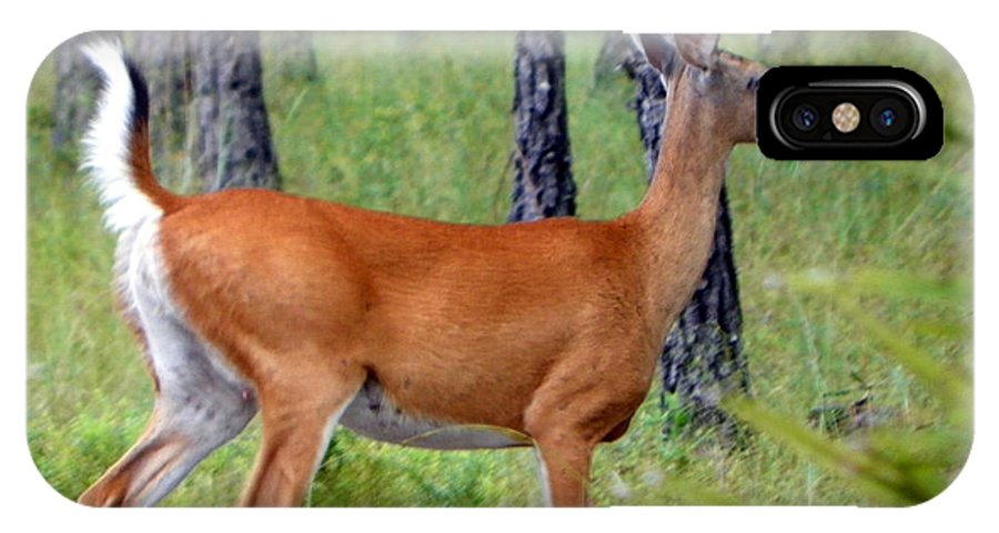 Whitetail IPhone X / XS Case featuring the photograph On The Run by Sheri McLeroy