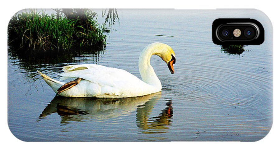 Swan Art IPhone X Case featuring the photograph One Foot At Ease Swan by Marie Jamieson