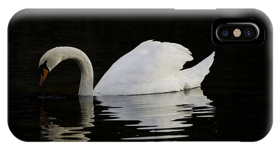 One Swans IPhone X Case featuring the photograph One Swan by Mats Silvan