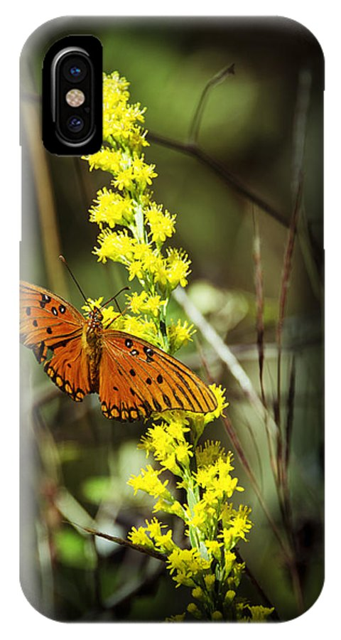 Butterfly IPhone X / XS Case featuring the photograph Orange Butterfly On Yellow Wildflower by Carolyn Marshall