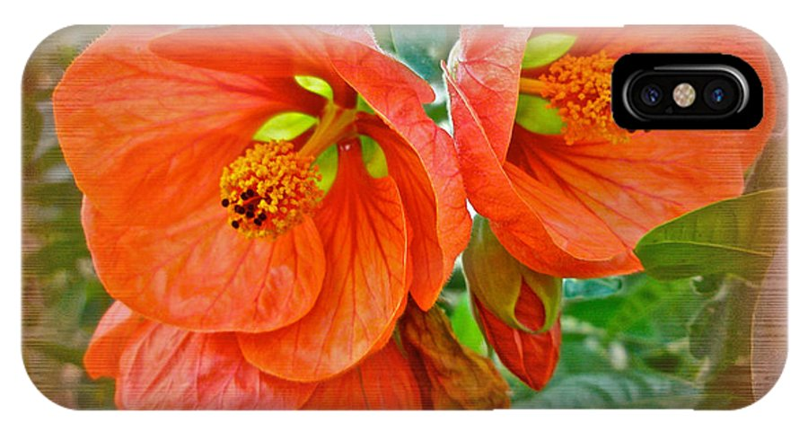 Hibiscus IPhone X Case featuring the photograph Orange Hibiscus Flowers by Mother Nature