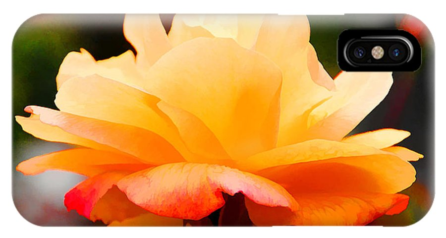 Flower IPhone X Case featuring the photograph Orange Sherbet by Diane Wood