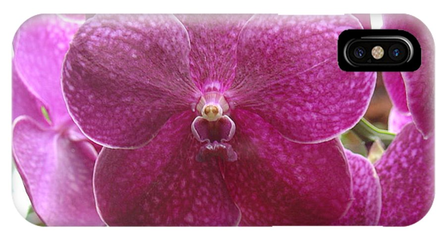 Orchid IPhone X Case featuring the photograph Orchid Cluster by Charles and Melisa Morrison