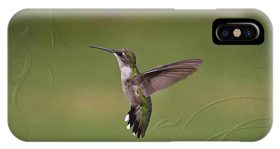 Hummingbird IPhone X Case featuring the photograph Ornate Angel by Cris Hayes