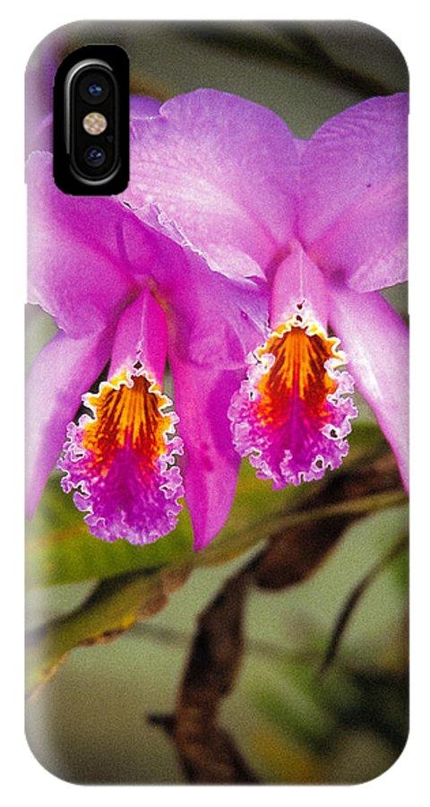 Andes IPhone X Case featuring the photograph Orquideas Flor De Mayo Del Bosque Nublado by Juan Carlos Lopez