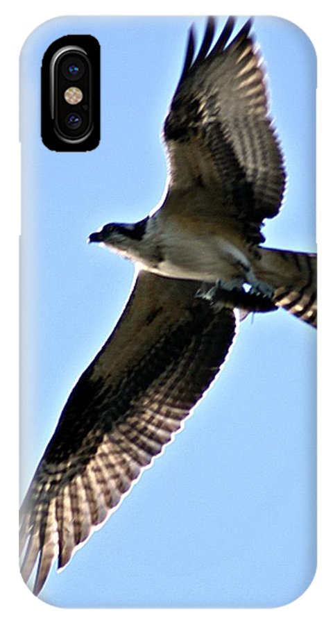 Osprey IPhone X Case featuring the photograph Osprey I by Joe Faherty