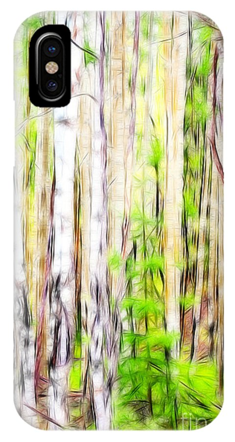 Fine Art Photography IPhone X Case featuring the photograph Out Of One Many Fractal by Donna Greene