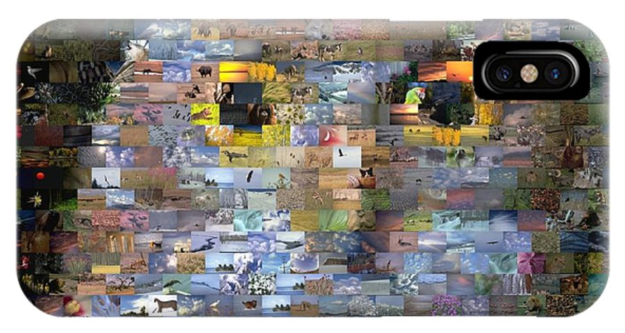 Owl IPhone X Case featuring the digital art Owl Mosaic by Paul Van Scott