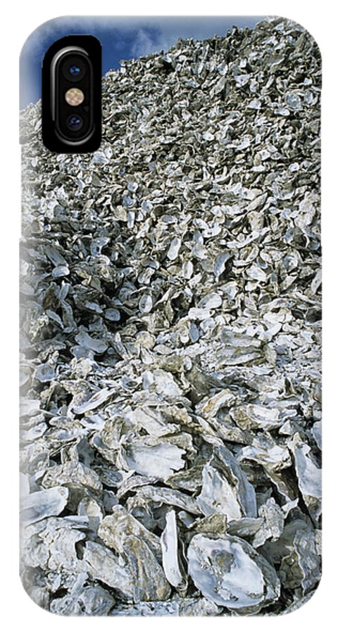 Oyster IPhone X / XS Case featuring the photograph Oyster Shells by Alan Sirulnikoff