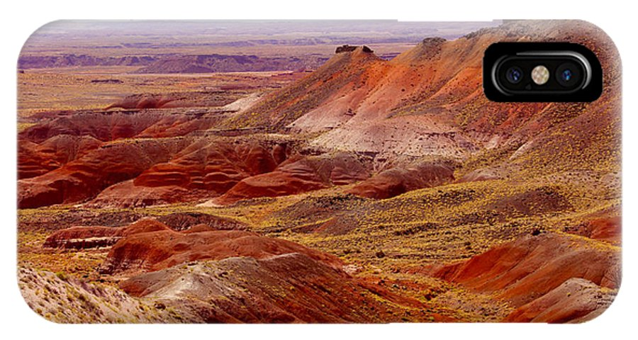 Painted Desert IPhone X Case featuring the photograph Painted Desert by Mike McGlothlen