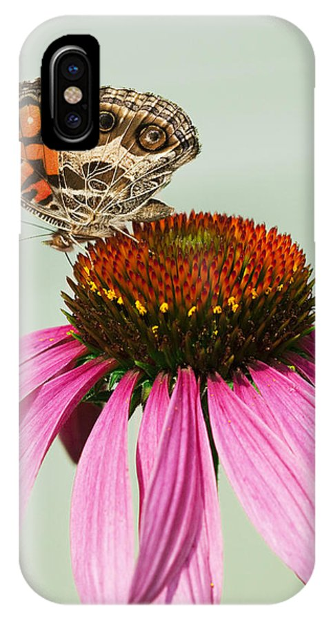 Painted IPhone X / XS Case featuring the photograph Painted Lady Butterfly by Kathy Clark