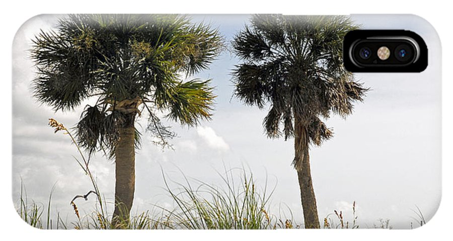Metal IPhone X Case featuring the photograph Palm Sea Oat Hill by G Adam Orosco