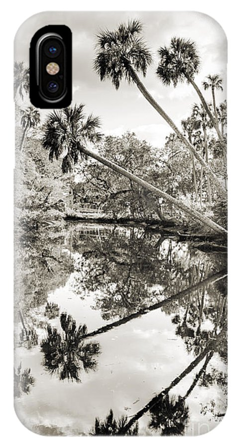 Palm Tree Reflections IPhone X Case featuring the photograph Palm Tree Reflections by Dustin K Ryan