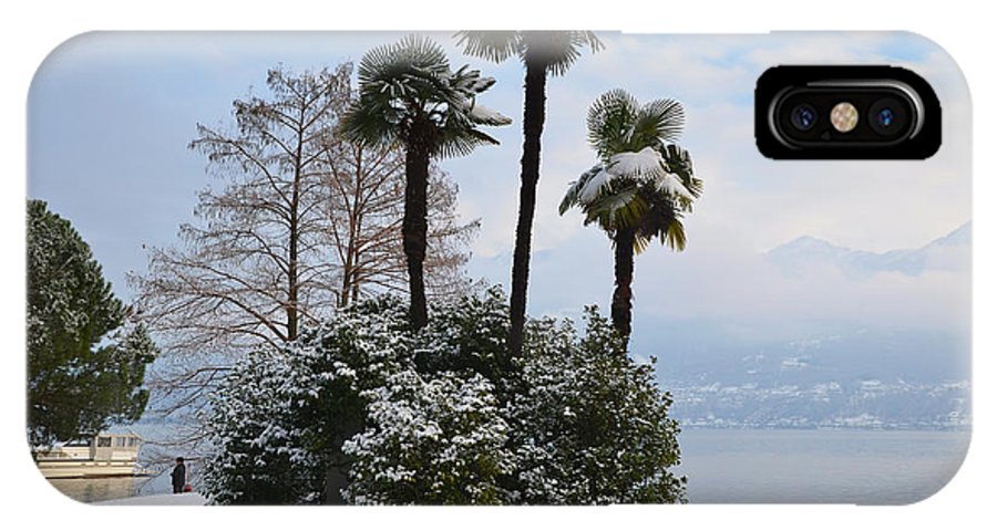 Palm IPhone X Case featuring the photograph Palm Trees With Snow by Mats Silvan