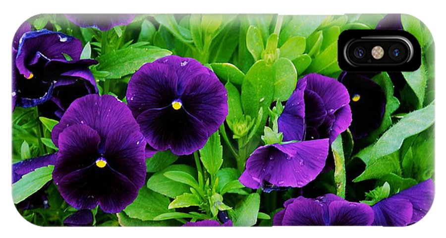 Flowers IPhone X Case featuring the photograph Pansies by Eric Tressler