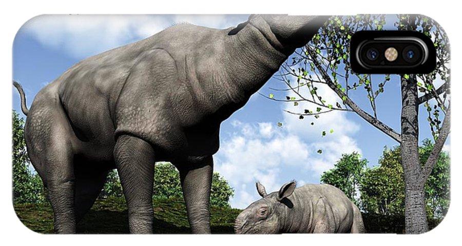 Paraceratherium IPhone X / XS Case featuring the photograph Paraceratherium, Artwork by Walter Myers