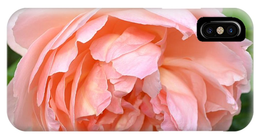 Peach Peony IPhone X Case featuring the photograph Peach Peony Flower by P S