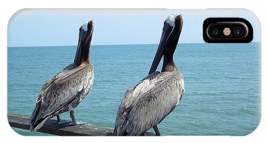 Pelicans IPhone X / XS Case featuring the photograph Pelicans On The Pier by Jennifer Stockman