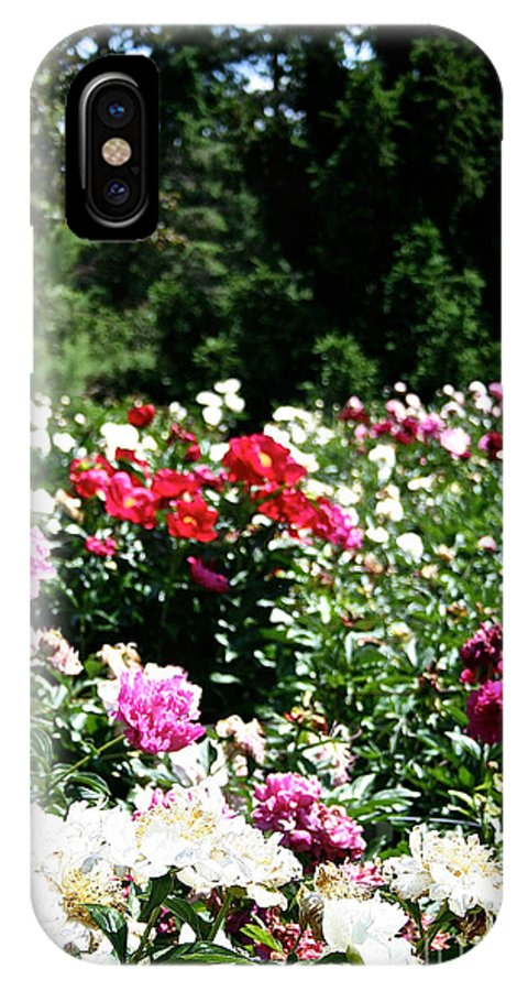 Flowers IPhone X Case featuring the photograph Peonies by Susan Herber