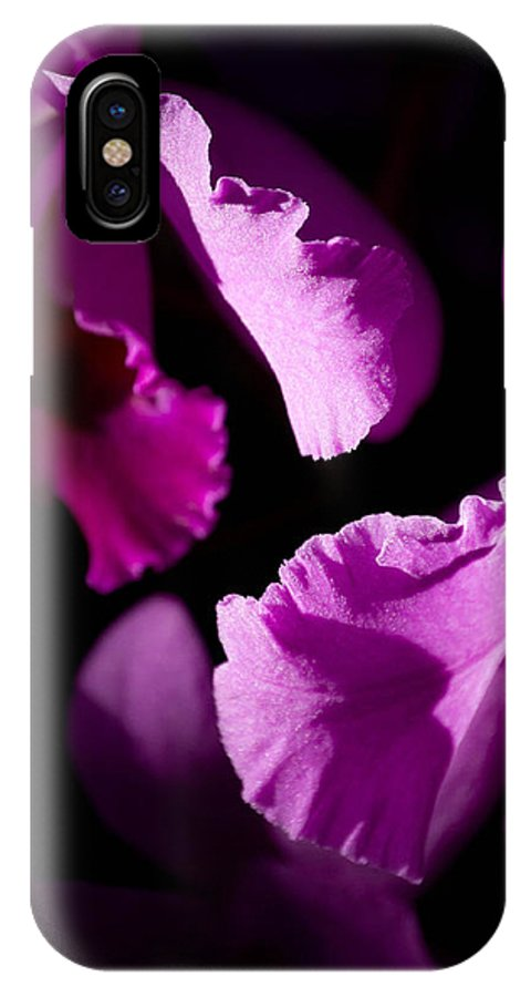Purple IPhone X Case featuring the photograph Petals Galore by Trish Tritz