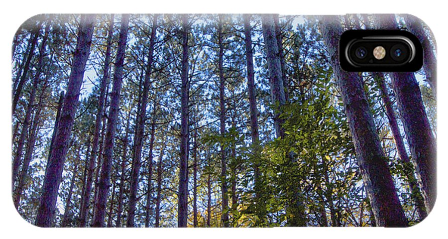 Pine Forest IPhone X Case featuring the photograph Pine Forest by Cheryl Butler