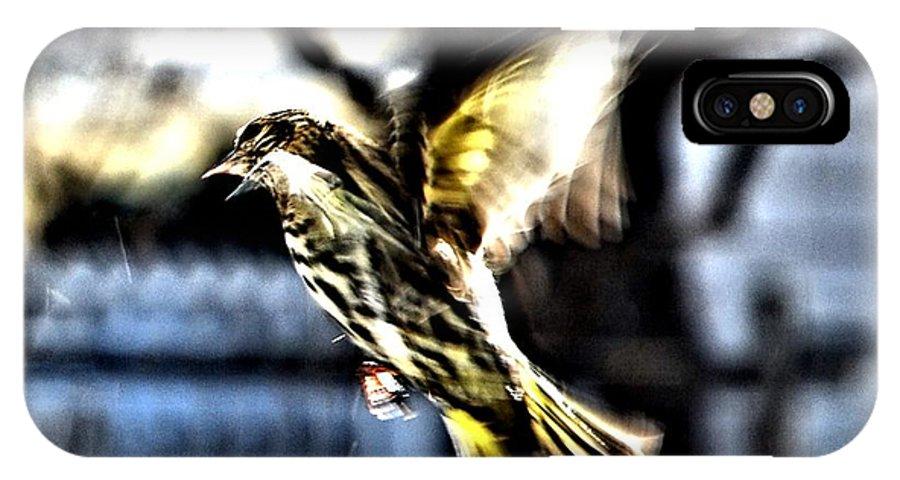 Pine Siskins IPhone X Case featuring the digital art Pine Siskin In Flight by Don Mann