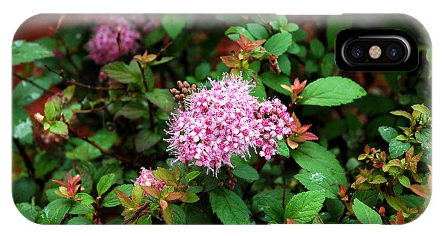 Usa IPhone X / XS Case featuring the photograph Pink Flowers Of Little Bavaria by LeeAnn McLaneGoetz McLaneGoetzStudioLLCcom