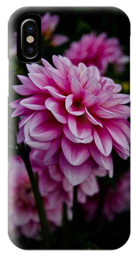 Dahlia IPhone X Case featuring the photograph Pink II by Athena Mckinzie