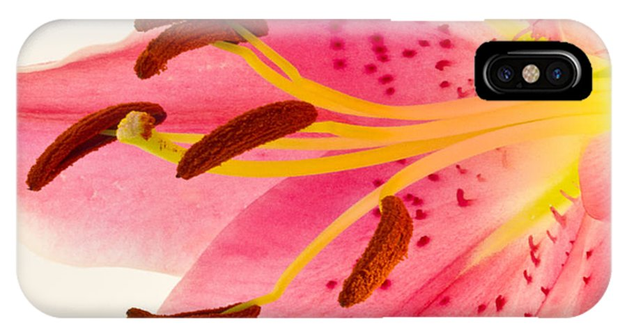 Lily IPhone X / XS Case featuring the photograph Pink Lily Square Version by Bill Swindaman