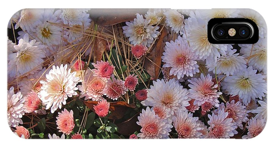 Flower IPhone X Case featuring the photograph Pink Mum by Joseph Yarbrough